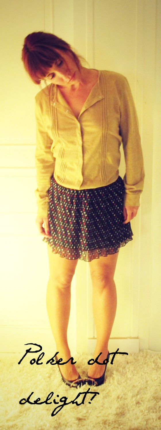 Polker dot skirt