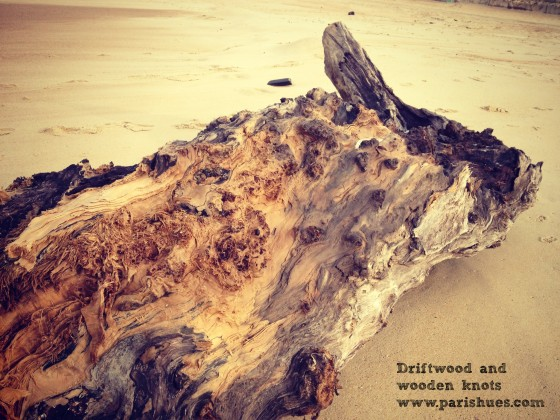 Driftwood and knots beach France