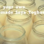 Homemade Soy Yogurt