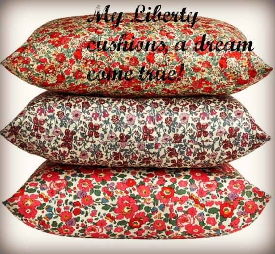 Liberty Cushions Paris